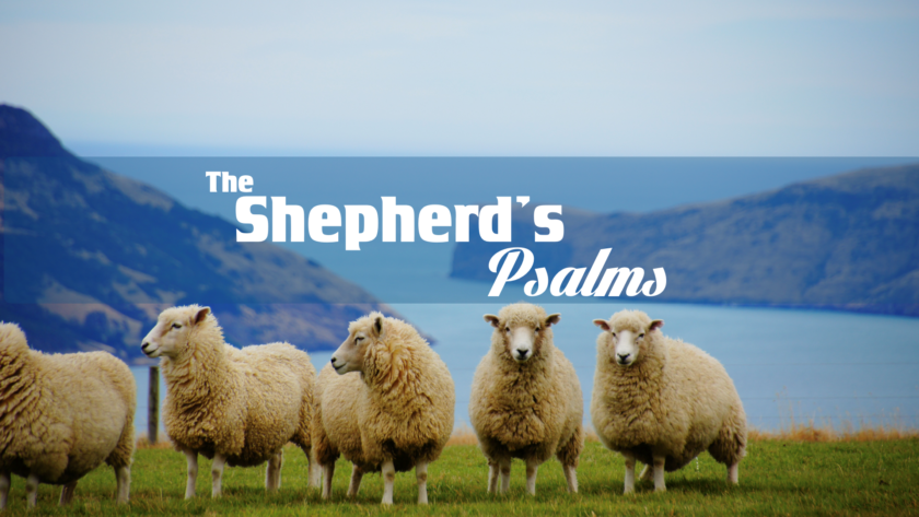 The Shepherd's Psalms